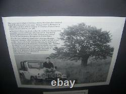 Robert Tino-Artist TN Ltd Ed 257/500 2006 Lithograph High Above Signed, Framed